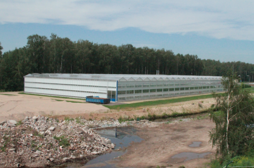 Creative example of collected methane use in a greenhouse in Latvia. Photo: Jon Powell